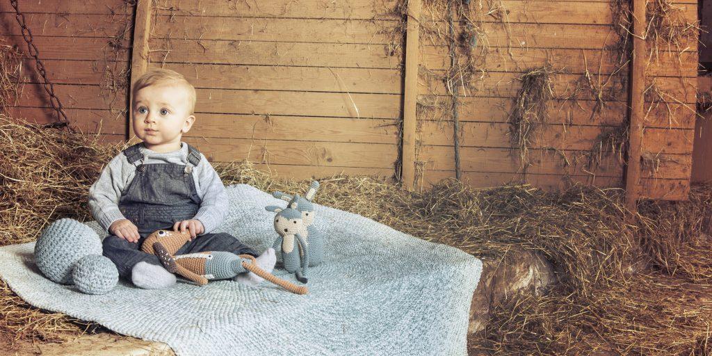 Sebra sfeerfoto Farm Boy