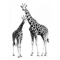 Esta home PhotowallXL giraffen