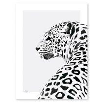 Lilipinso Serengeti poster luipaard zwart wit 30x40cm