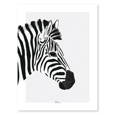 Lilipinso Serengeti poster zebra zwart wit 30x40cm