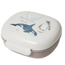 Sebra lunchbox arctic animals