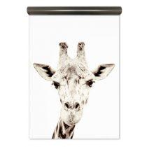 Groovy Magnets magneetbehang giraf 127x265cm