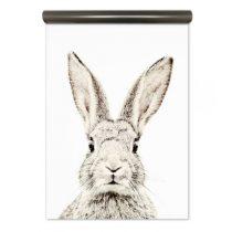 Groovy Magnets magneetbehang konijn