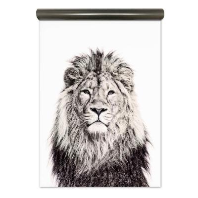 Groovy Magnets magneetbehang leeuw