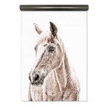 Groovy Magnets magneetbehang paard
