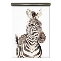 Groovy Magnets magneetbehang zebra
