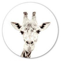Groovy Magnets magneetsticker giraf