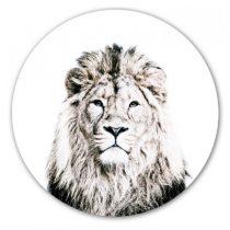 Groovy Magnets magneetsticker leeuw