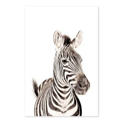 Groovy Magnets magneetsticker zebra
