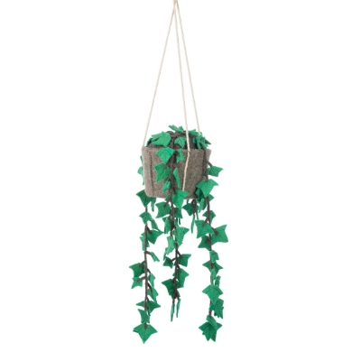 Kidsdepot hanging plant hedera