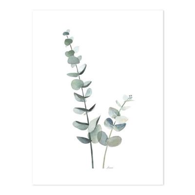 Lilipinso Greenery poster Eucalyptus
