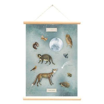 Little and Pure poster praatplaat Pimpelmees In de maneschijn