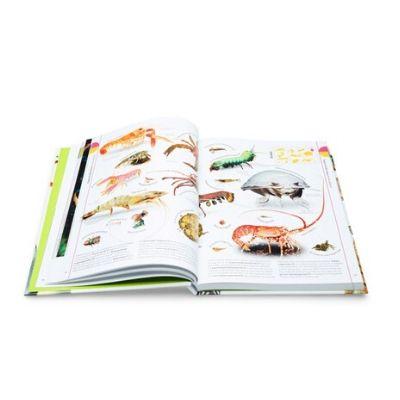 Gottmer Het dierenboek