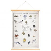 Little and Pure poster aan zee