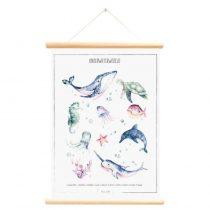 Little and Pure poster onderwaterwereld 2